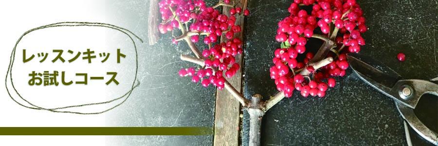 ロータスガーデン お花のレッスンキット秋