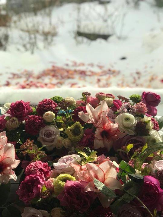冬だから花が恋しい。