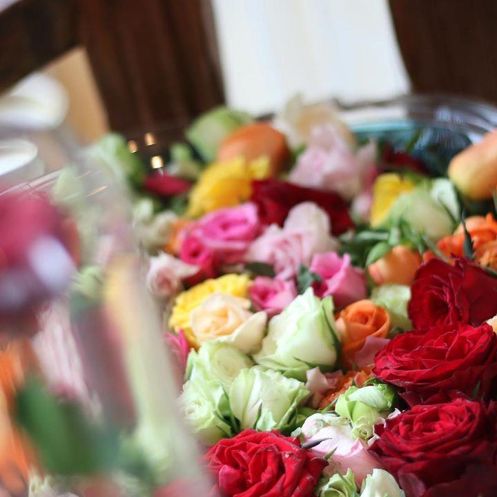#lotusgarden #ロータスガーデン #敬老の日 #敬老の日はバラ風呂のプレゼント