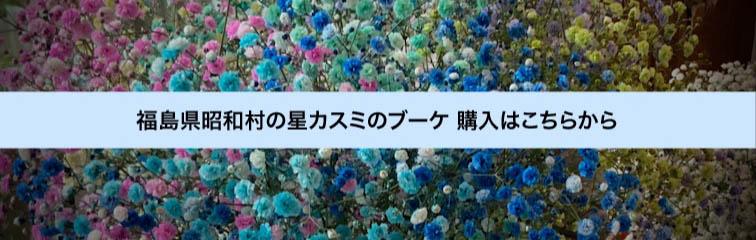福島県昭和村の星カスミのブーケ (願い叶えるのレインボーブーケ)