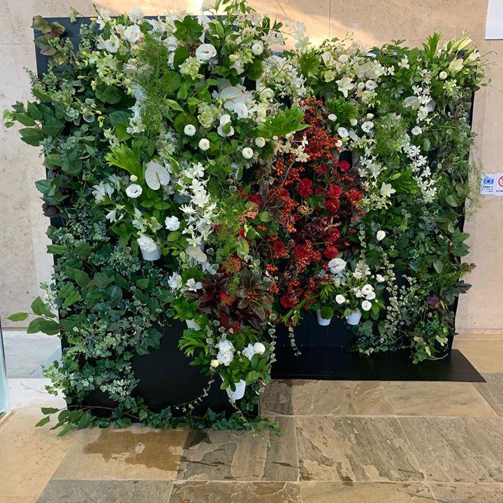 リメークのフラワーウォール #florist #followme #fowerwall #lotusgarden #hidekihatakeyama